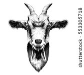Goat Head Vector Black And...