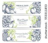 Fresh Fruit Sketch Banner Set....