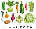 vegetable isolated sketches.... | Shutterstock .eps vector #553312234