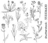 vector set of hand drawn... | Shutterstock .eps vector #553336630