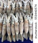 Small photo of Fresh Squid in market , Bigfin reef squid, Soft cuttlefish , Sepioteuthis lessoniana , Teuthida
