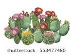 watercolor cactus border... | Shutterstock . vector #553477480