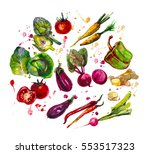 hand drawn set with  watercolor ... | Shutterstock . vector #553517323
