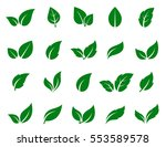 green leaf icons set on white... | Shutterstock . vector #553589578