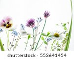 summer flowers | Shutterstock . vector #553641454