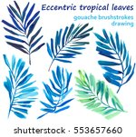 set of isolated hand drawn fern ... | Shutterstock . vector #553657660