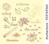 set of spices  nutmeg  cardamom ...   Shutterstock .eps vector #553769563