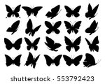 Set Of Butterflies  Isolated O...