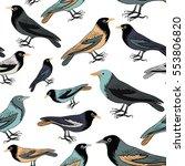 collection of various birds... | Shutterstock .eps vector #553806820