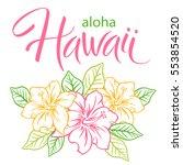 aloha hawaii  hand written... | Shutterstock .eps vector #553854520