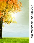 wonderful autumn scenery | Shutterstock . vector #55386997