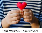 child holding a small pink... | Shutterstock . vector #553889704