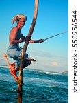 weligama  sri lanka    ... | Shutterstock . vector #553956544