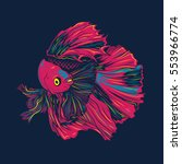 colorful betta fish vector... | Shutterstock .eps vector #553966774