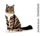Stock vector tiger stripes cat at the white background 554005630