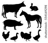 Farm  Farmyard Animals Vector...