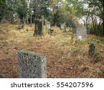 Abandoned Old Cemetery With...
