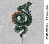 viper snake. hand drawn vector... | Shutterstock .eps vector #554223538