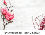 spring background with nice... | Shutterstock . vector #554252524