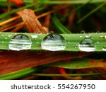 Macro Photography Of Raindrops...