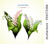 lily of the valley. vector... | Shutterstock .eps vector #554272486