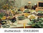 set of healing herbs. dried... | Shutterstock . vector #554318044