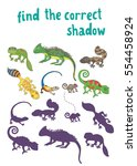 find the correct shadow   kids... | Shutterstock .eps vector #554458924