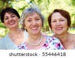 portrait of three aged women... | Shutterstock . vector #55446418