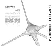 3d neuron model. vector graphic ... | Shutterstock .eps vector #554513644