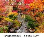 Stock photo autumn garden with stream water at eikando zenrinji temple kyoto japan 554517694