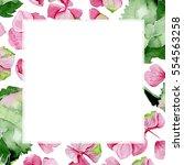 pink watercolor hydrangea... | Shutterstock . vector #554563258