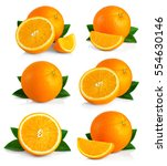 set of ripe orange fruits with... | Shutterstock . vector #554630146