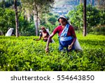 maskeliya  sri lanka   january... | Shutterstock . vector #554643850