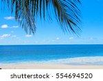idyllic coast palms overhanging  | Shutterstock . vector #554694520
