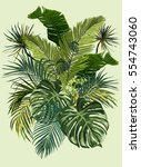 vector vintage composition with ... | Shutterstock .eps vector #554743060