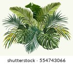vector vintage composition with ... | Shutterstock .eps vector #554743066