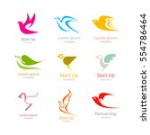 bird logo collection. design... | Shutterstock .eps vector #554786464