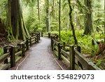 macmillan provincial park is a... | Shutterstock . vector #554829073