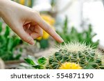 Female Finger Touching Prickly...