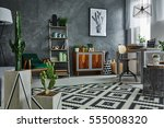 grey apartment with decorative... | Shutterstock . vector #555008320