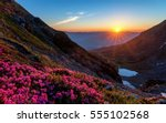 Stock photo sunrise in the mountains landscape with rhododendrons in foreground 555102568