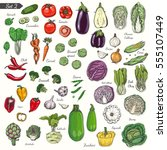 big set of colored vegetables... | Shutterstock .eps vector #555107449