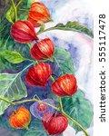 watercolor painting  flowers | Shutterstock . vector #555117478
