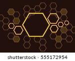 hexagon bee hive design... | Shutterstock .eps vector #555172954