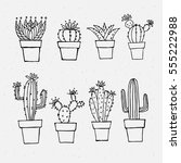 cactus outlines. | Shutterstock .eps vector #555222988