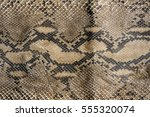 Texture Of Snake Leather Skin.