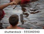 Small photo of Amazon river dolphin