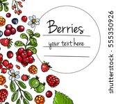 berries and leaves. wild... | Shutterstock .eps vector #555350926