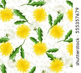 seamless dandelion pattern....   Shutterstock .eps vector #555357679