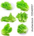 Collage  Set  Of Fresh Leaf Of...